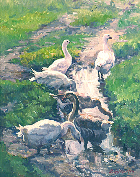 Geese at the pool, Valery Busygin