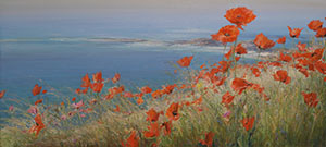 Poppies on the shore