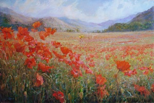 Valley of wild poppies