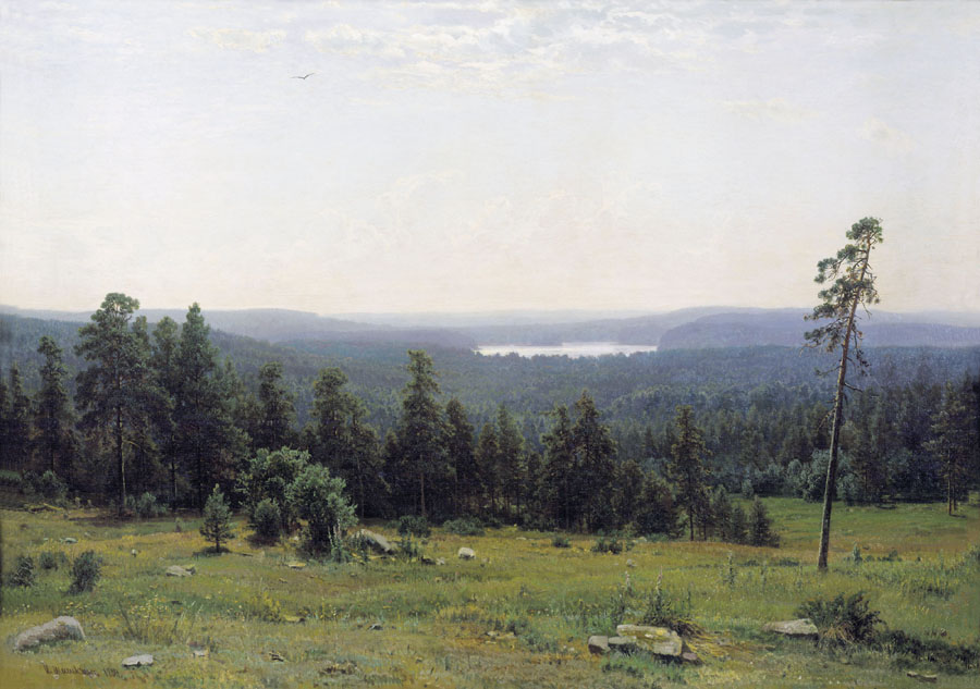 Forest expanse, 1884, Shishkin Ivan, The Tretyakov Gallery paintings to artist of ArtRussia