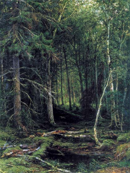 Backwoods, 1872, Shishkin Ivan, The Russian Museum paintings to artist of ArtRussia